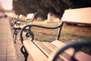 Park Bench Image